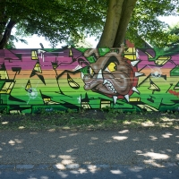 Copenhagen-Walls-June-2016_Graffiti_Spraydaily_15_Wood, VARS