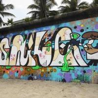 Stile_VLOK_L163_HMNI_Graffiti_Spraydaily_12