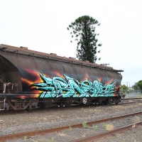 Basix_Hmni_Spraydaily_Graffiti_Australia_06