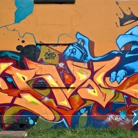 Serval_HMNI_Spraydaily_Graffiti_Geneva_01
