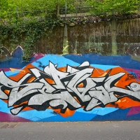 Serval_HMNI_Spraydaily_Graffiti_Geneva_03