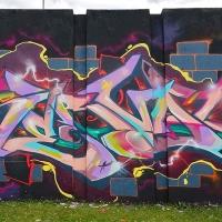 Serval_HMNI_Spraydaily_Graffiti_Geneva_04