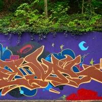 Serval_HMNI_Spraydaily_Graffiti_Geneva_05