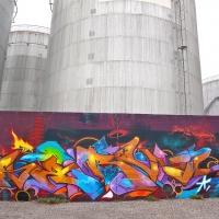 Serval_HMNI_Spraydaily_Graffiti_Geneva_07