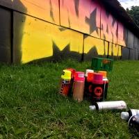 Roskilde Graffiti_Rfgraff_Copenhagen_Spraydaily_Denmark_11_Merlot