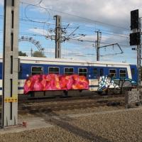 ale_vlok_graffiti_8