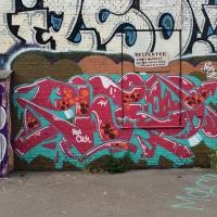 Copenhagen-Walls_Spraydaily_23