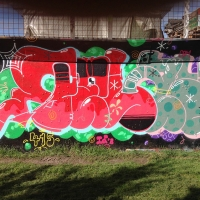 Copenhagen Walls September 2016_Graffiti_Spraydaily_12_Relay