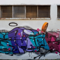 Svame_HMNI_Spraydaily_Graffiti_Italy_13