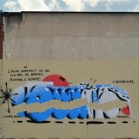 Svame_HMNI_Spraydaily_Graffiti_Italy_24