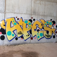 Apes_HDA_Barcelona_Spraydaily_Graffiti_04