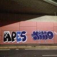 Apes_HDA_Barcelona_Spraydaily_Graffiti_18