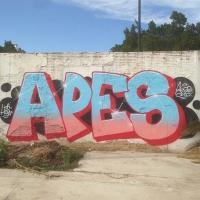 Apes_HDA_Barcelona_Spraydaily_Graffiti_19