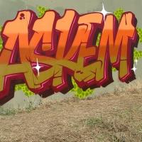 Askem_SDM_HMNI_Spraydaily_Graffiti_06.jpg