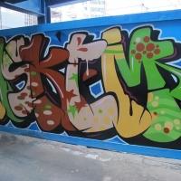 Askem_SDM_HMNI_Spraydaily_Graffiti_11.jpg