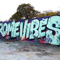 Crome_London_HMNI_Graffiti_Spraydaily_06