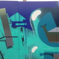 Dais_ASS_HMNI_Graffiti_Spraydaily_27