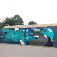 Dais_ASS_HMNI_Graffiti_Spraydaily_28