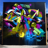 Dais_ASS_HMNI_Graffiti_Spraydaily_29