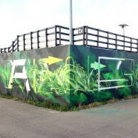 Dais_ASS_HMNI_Graffiti_Spraydaily_39