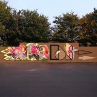 Dais_ASS_HMNI_Graffiti_Spraydaily_45