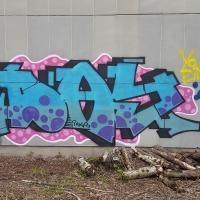 Day_INKS_HMNI_Spraydaily_Graffiti_20