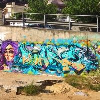 Diare_EHG_Graffiti_Spraydaily_HMNI_18.jpg