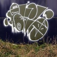 DR Evil_FOES_FLIES_Graffiti_HMNI_Spraydaily_16.jpg