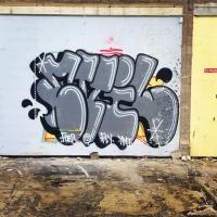 DR Evil_FOES_FLIES_Graffiti_HMNI_Spraydaily_21.jpg