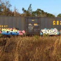 Echo_HMNI_Graffiti_Spraydaily_06