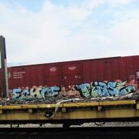Echo_HMNI_Graffiti_Spraydaily_30