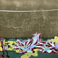 Ewze_Graffiti_USA_America_Spraydaily_06