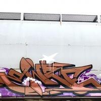 Ewze_Graffiti_USA_America_Spraydaily_16