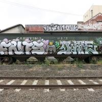 Fritz_BNF_Australia_HMNI_Graffiti_Spraydaily_02