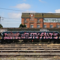 Fritz_BNF_Australia_HMNI_Graffiti_Spraydaily_05