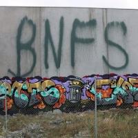 Fritz_BNF_Australia_HMNI_Graffiti_Spraydaily_11