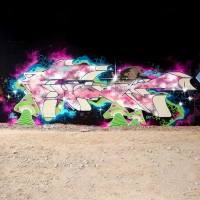 Func88_ULTRABOYZ_GT_Paris_Graffiti_HMNI_Spraydaily_08