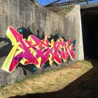 Hemsk_NHR_Gothenburg_Graffiti_Spraydaily_hmni_06