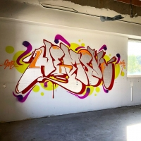 Hemsk_NHR_Gothenburg_Graffiti_Spraydaily_hmni_07