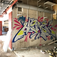 Hemsk_NHR_Gothenburg_Graffiti_Spraydaily_hmni_08