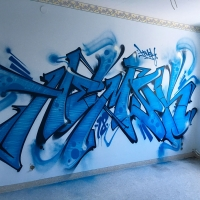 Hemsk_NHR_Gothenburg_Graffiti_Spraydaily_hmni_09