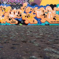 Hoskins_SPS_FYM_UKS_Manchester_England_HMNI_Graffiti_Spraydaily_09