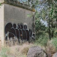ilk_hmni_graffiti_spraydaily_02