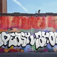 ilk_hmni_graffiti_spraydaily_11