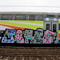 Jeris_NECP_QLTY_HMNI_Graffiti_Spraydaily_19