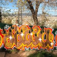 Laia_ck_hmni_Barcelona_graffiti_spraydaily_03