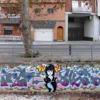Mer_BL_Barcelona_HMNI_Graffiti_Spraydaily_22
