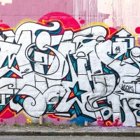 Mind_VLOK_FIA_FY_RT_HMNI_Graffiti-Spraydaily_20
