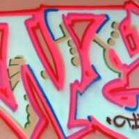 Min_NYC_HMNI_Spraydaily_06