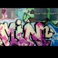 Min_NYC_HMNI_Spraydaily_12